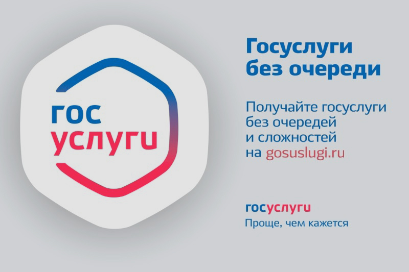 banner_gosuslugi